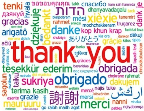 THANK YOU Tag Cloud (card thanks greetings gratitude welcome)