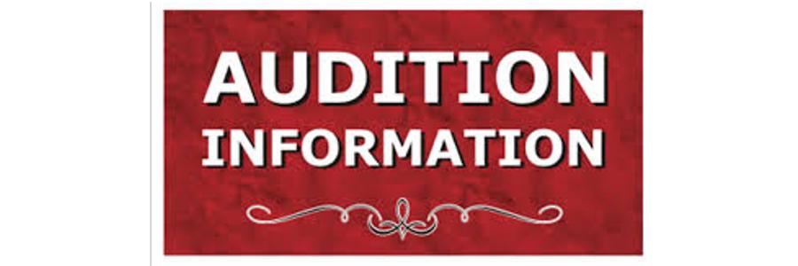 Audition Information Soliloquy slider